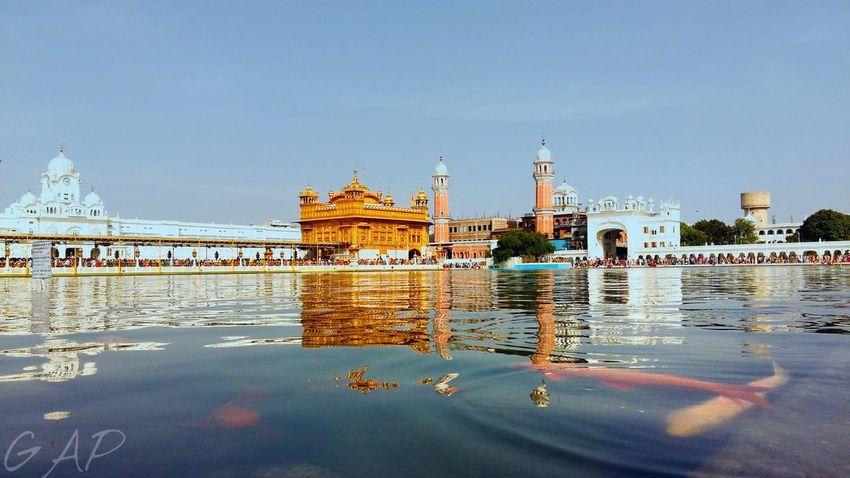 Temple Gurudwara Goldentempleamritsar Fish Goldfish Water Reflection Sky And Clouds
