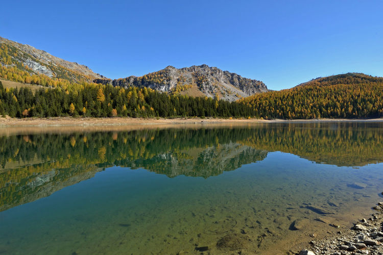 Palu lake in autumn - Valmalenco, Valtellina, Italy Autumn Colors Green Lombardy Nature Palu Pine Reflection Trees Wood Alps Blue Sky Colorful Fall Forest Italy Lake Landscape Lombardia Mountain Palu' Valley Valmalenco Valtellina Yellow