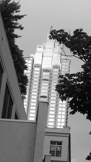 Domo Arigato Mr Roboto Low Angle View City Skyscraper Architecture Building Exterior Sky Built Structure Office Building Tall - High Cityscape High Rise Urban Scene Urban Skyline Skyline