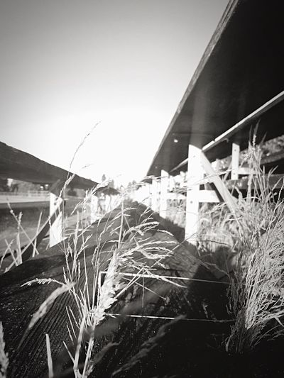 No longer needed Old Bleachers Beauty In Nature Taking Photos Football Practice Walking The Track Perspective Photography Black And White Monochrome Photography