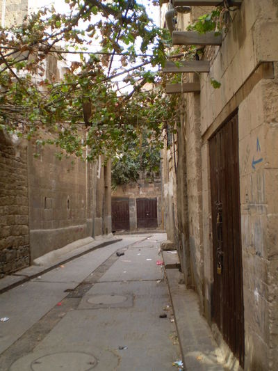 Jemez Yemen Alley Architecture Building Building Exterior Built Structure City Day Direction Empty Footpath House Location Nature No People Outdoors Plant Residential District Road Street The Way Forward Transportation Tree