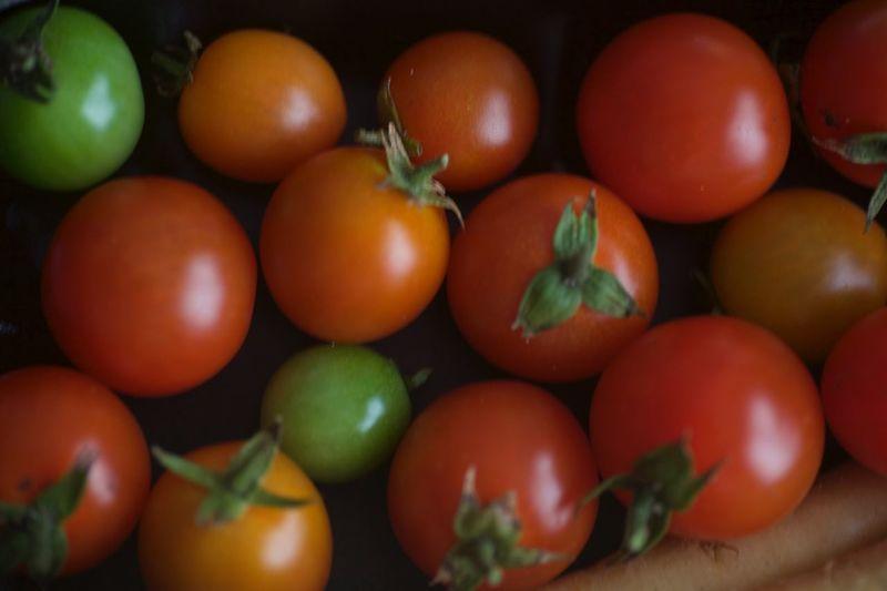 Tomato's Food