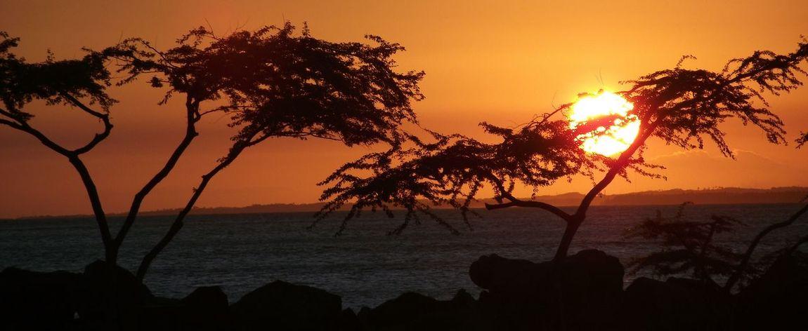 Salvador Salvador Bahia Bahia Brasil Bahia/brazil Brazil Bahia De Todos Os Santos Sunset_collection Sun Sunset