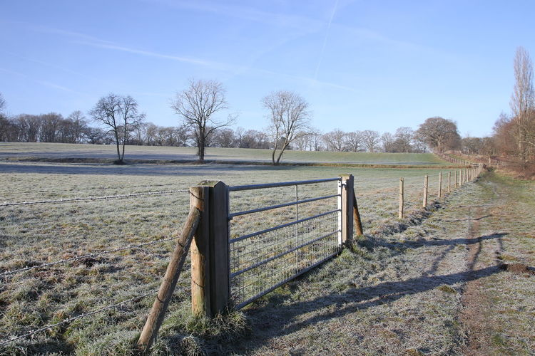 Clear Sky Day Fence Frosty Field Gate Muddy Walks Nature No People Outdoors Sky Surrey Countryside Tree Winter