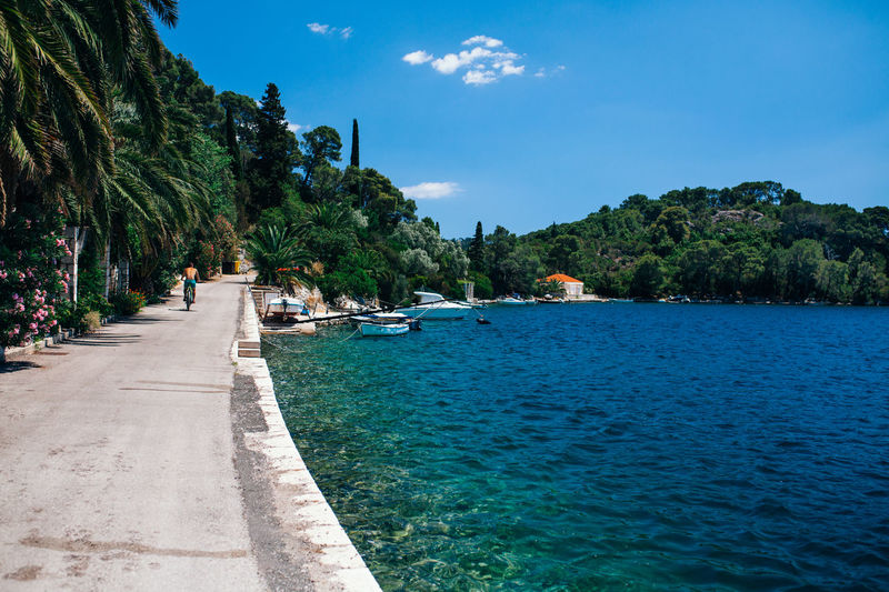 Sipan national park Beauty In Nature Bike Bike Ride Blue Croatia Day Moored National Park Nature Nature Park  Nautical Vessel Outdoors Palm Tree Scenics Sea Sipan Sky Tranquil Scene Tranquility Transportation Tree Vacation Water