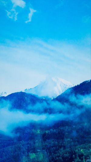 Sky Blue Beauty