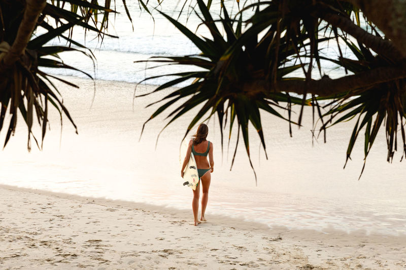 Byron Bay, Australia Tree Land Beach Palm Tree Tropical Climate Sea One Person Water Full Length Nature Leisure Activity Rear View Plant Sand Lifestyles Real People Holiday Vacations Palm Leaf Summer Surfing Travel Destinations Surf Australia Byron Bay A New Perspective On Life