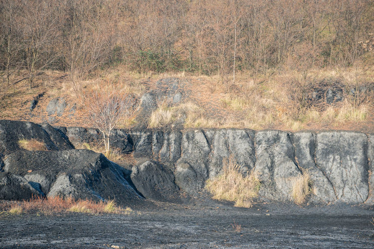 Abandoned Coal Coalmine Industrial Industrial Landscapes Mine Mining Nature Surface Mine