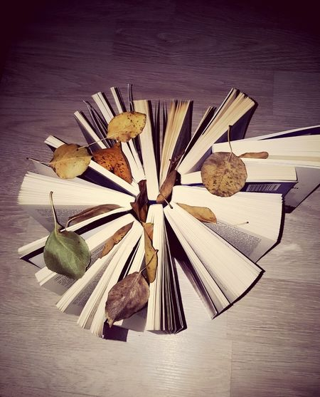 Books Book Home Homesweethome Trip Love Ideas