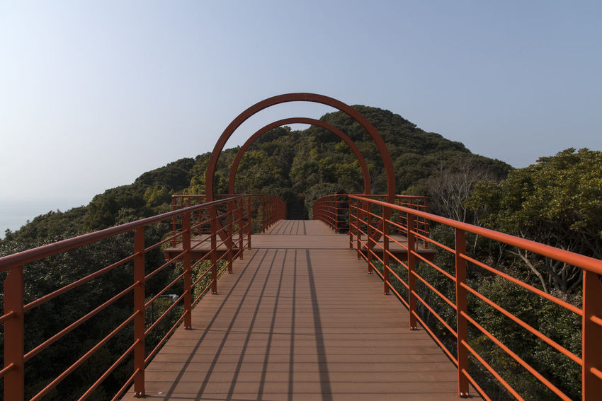 on the bridge at Jangsado Island in Tongyeong, Gyeongnam, South Korea Architecture Nikon D850 South Korea Tongyeong Architecture Beauty In Nature Bridge Bridge - Man Made Structure Built Structure Clear Sky Connection D850 Day Direction Footbridge Footpath Jangsado Nature No People Outdoor Photography Outdoors Plant Railing Sky Staircase Steps And Staircases The Way Forward Tranquility Tree