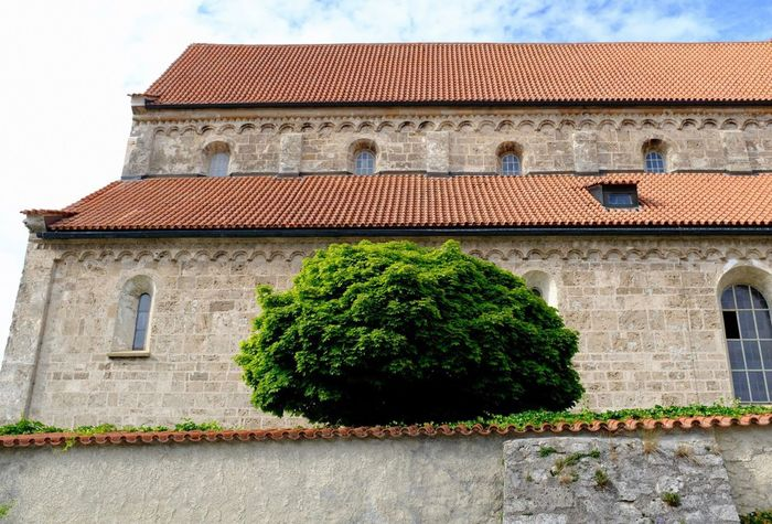Architecture Built Structure Building Exterior Plant Building The Past History Low Angle View Tree Nature Wall - Building Feature Place Of Worship Wall