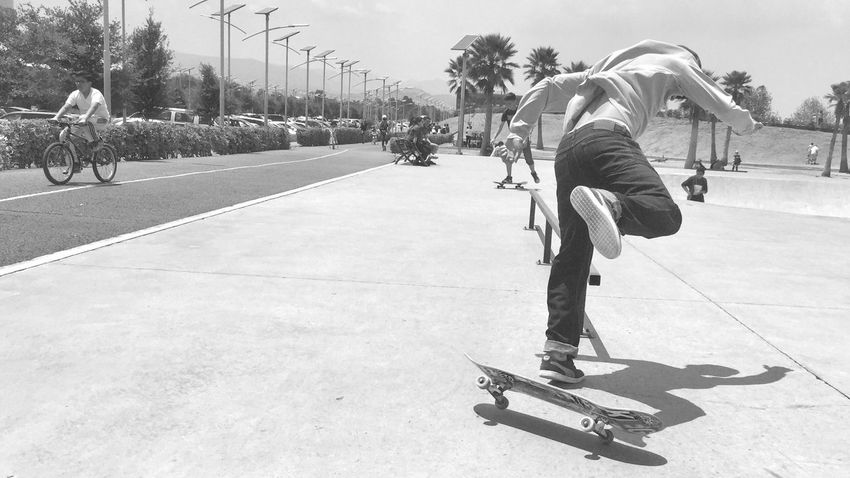 Real People Balance Skateboard Park Skateboard Outdoors Sports Clothing Stunt Sport Skill  Lifestyles Leisure Activity Day Tree Competitive Sport Men Playing Full Length Competition Sunlight Healthy Lifestyle The Street Photographer - 2017 EyeEm Awards