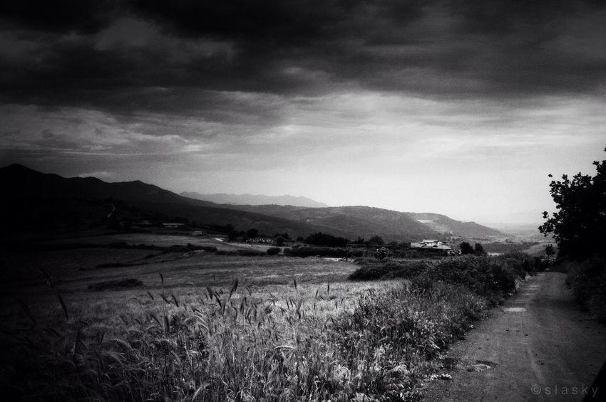 Blackandwhite Monochrome Landscape Nature Just Around The Corner