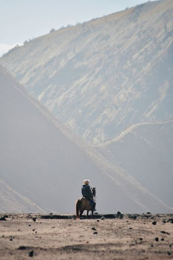 Man riding horse on land
