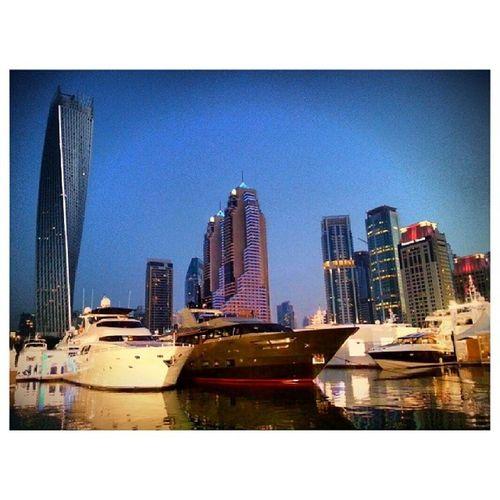 Visitor!! Dubaiinternationalboatshow Dubaiinternationalmarineclub Minaseyahi Dubai uae yacht boat