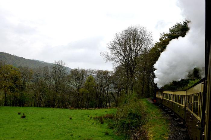 Valw of Rheidol Railway Aberystwyth Day Devils Bridge Mountain Railway Outdoors Steam Locomotive Steam Train Victorian