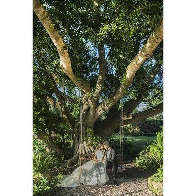 Canon 5dmarkll Color Boda Amor Arte Beso Kiss árbol Fotografo Foto Fotografodebodas Wedding Weddingphotographer Weddingphotography Tdt Yúcatan Hacienda
