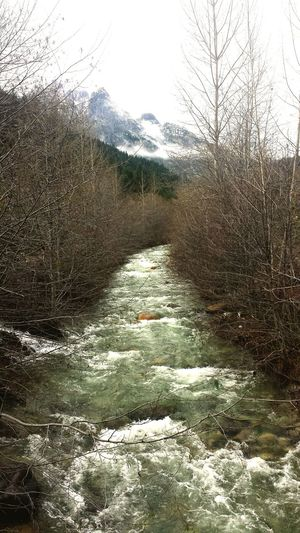 Just around the Riverbend. Beautiful Nature Nature_collection Nature Mother Nature Is Amazing Mother Nature In The Forest River River Collection Dunsmuir