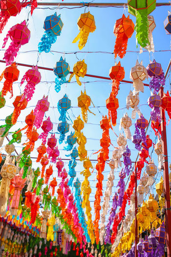 Colorful paper lanterns in Yee Peng Festival , Chiang Mai (North of Thailand) Low Angle View Plant Sky Blue Red Large Group Of Objects Art And Craft Lanterns Holiday Festival