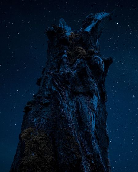 Low angle view of statue against clear sky at night