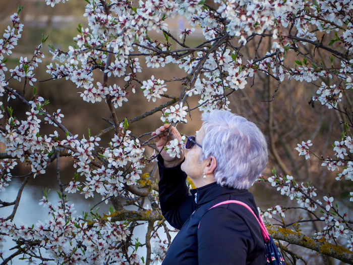 Side view of woman holding cherry tree branches
