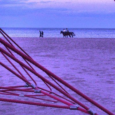 Playa Beach Arena Sand Caballos Horses Noche Night Springmycity Valenciagram