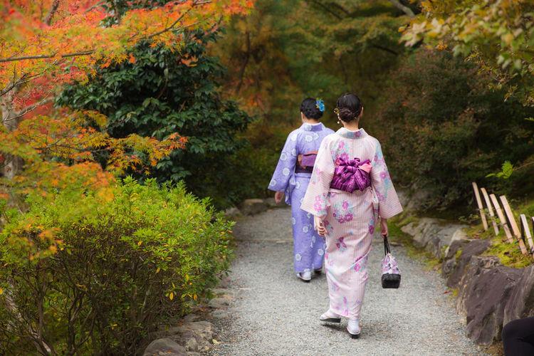 Rear view of women walking on footpath by trees