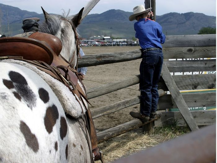 Cowboy Horse Saddle Western Rodeo Kid Country Life The Week On EyeEm The Portraitist - 2018 EyeEm Awards