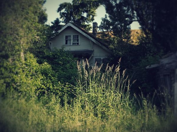 Picture of an abandoned house. Taking Photos Abandoned Check This Out Decrepit