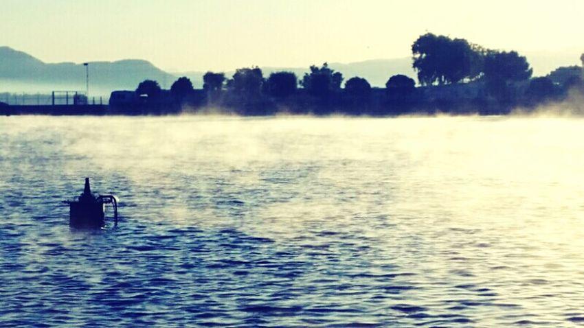 Foggy Lake Landscape_Collection Parc De L'Agulla