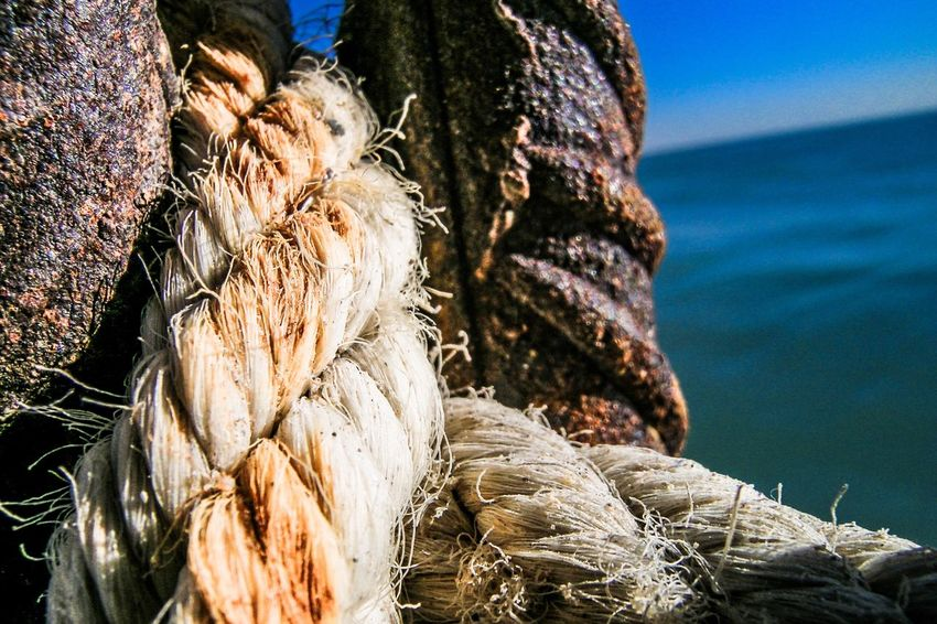 EyeEm Selects Perspectives On Nature Rethink Things Knot Iron And Ropes rope knot Rope Knot Sea Side Close Up Detalles Close-up Oxide Textures And Surfaces Outdoors Water EyeEm Best Shots No People