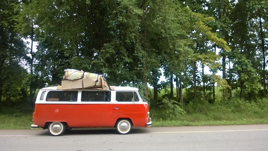 VW Bus Car Day Growth Land Vehicle Mode Of Transport Nature Outdoors Real People Red Road Stationary Transportation Tree Volkswagen