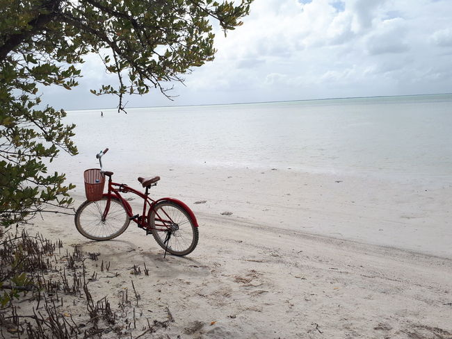 bicicleta Beach Sand Sea Landscape Outdoors Bicycle Day Tranquility Nature Horizon Over Water Beauty In Nature No People Water Cloud - Sky