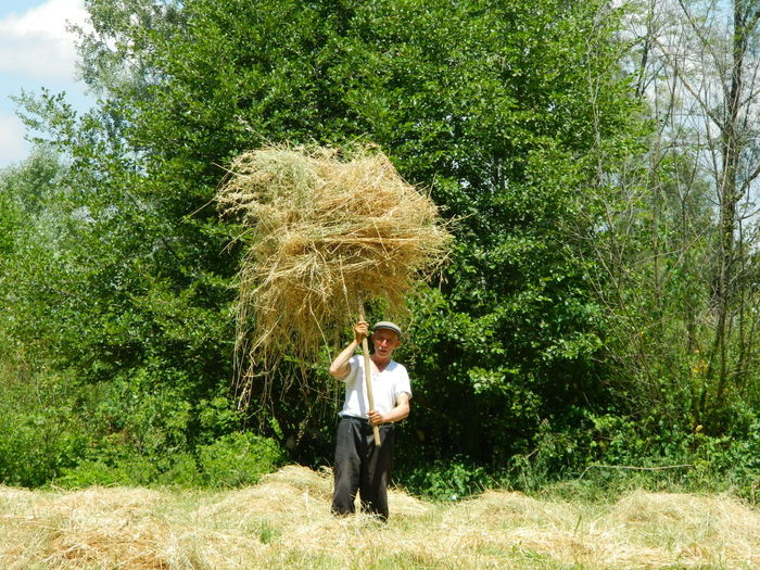 Portrait of man holding hay with stick while standing against trees