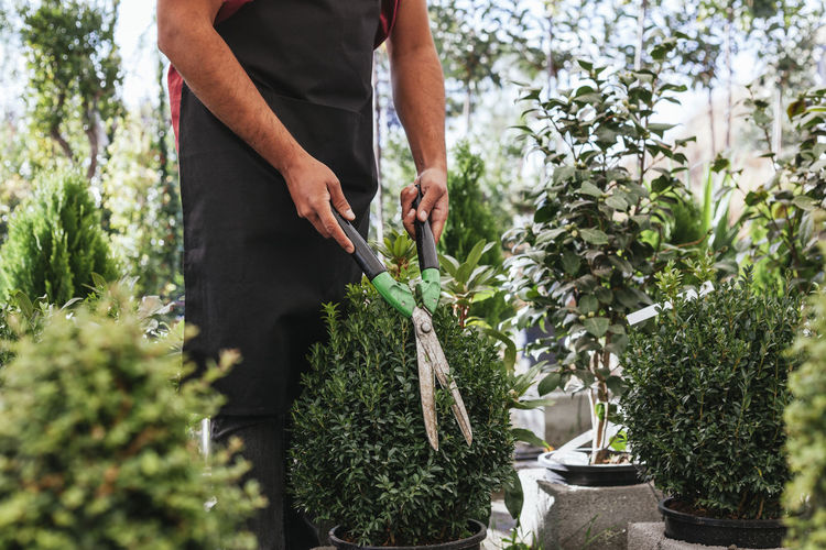 Midsection of man working on potted plant