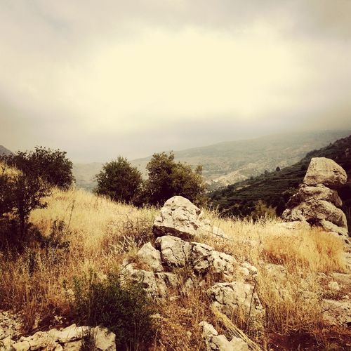 Nature Lebanon Summer Vacation