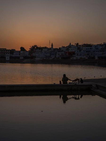An animal lover patting a dog while watching the sunset in Pushkar, India. Transportation Sunset Water Architecture Building Exterior Silhouette Built Structure Nautical Vessel Sky Mode Of Transport River Outdoors City Nature No People Day AnimalTogetherness Dog Strays India Pushkar