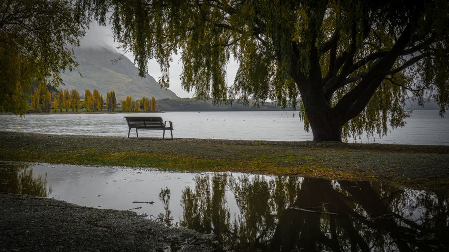 Reflective Bench Beauty In Nature Day Lake Landscape Mountain Nature New Zealand Scenery No People Outdoors Park Bench Scenics Sky Tranquil Scene Tranquility Tree Water
