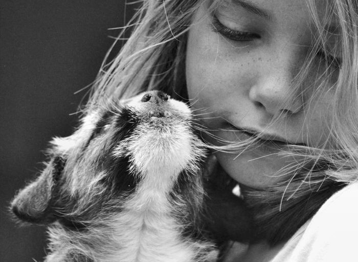 Close-up of girl and cat