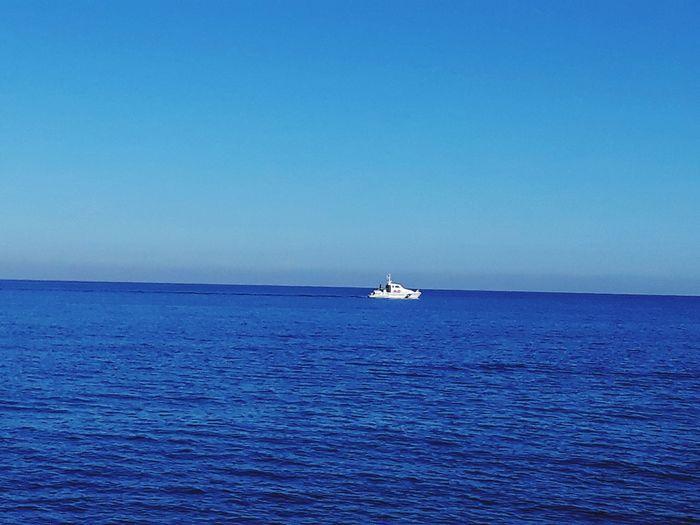 Sea Horizon Over Water Nautical Vessel Water Sailing Blue Tranquil Scene