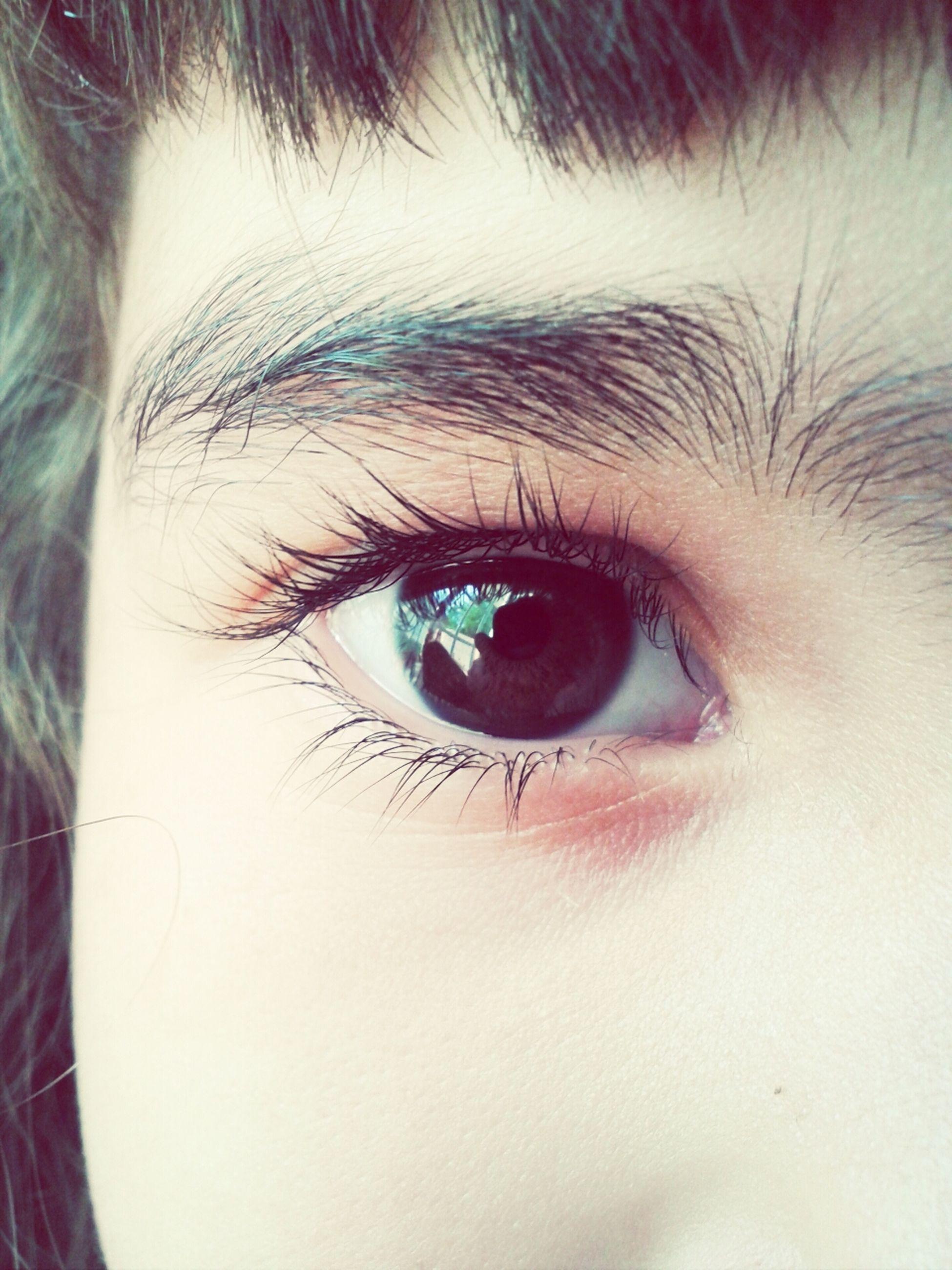 human eye, eyelash, close-up, eyesight, part of, sensory perception, iris - eye, eyeball, extreme close-up, human skin, looking at camera, lifestyles, person, human face, extreme close up, full frame, portrait