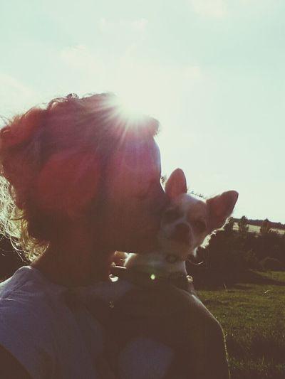 Chihuahua Lov❤ Taking Photos EyeEm Best Shots- My Bes Shot i love you