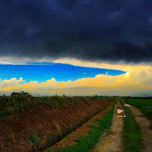 Cloud - Sky Sky Environment Landscape Scenics - Nature Rural Scene Beauty In Nature Land Field Nature No People Agriculture Direction Storm