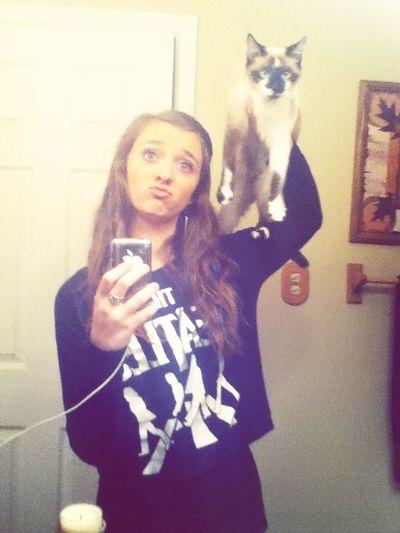 This Cat Hates Me