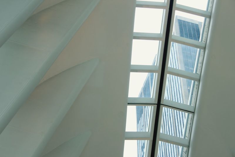 Skylight inside the Oculus building Skylight Oculus Building EyeEm Selects Window Architecture Indoors  No People Low Angle View Built Structure Glass - Material Day Curtain Full Frame Transparent Pattern Sunlight Ceiling Security Building Textile Window Frame