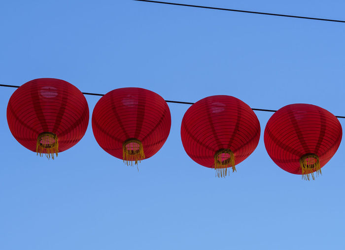 lanterns on a rope after Chinese new year Blue Celebration Chinese Lantern Chinese Lantern Festival Chinese New Year Clear Sky Cultures Hanging Lantern Outdoors Red Traditional Festival