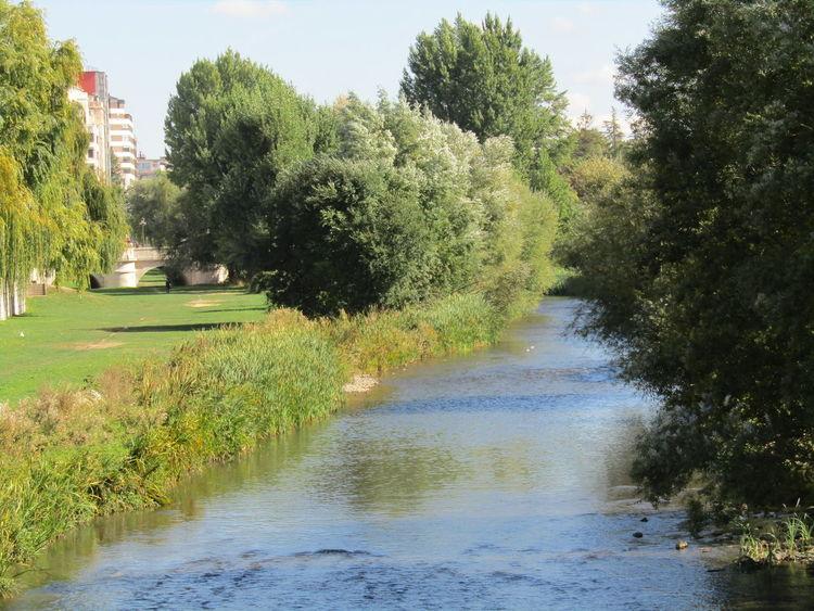 Water Stadt City Green Grün Sommer Summer Trees Bäume Park River Fluss Spanien SPAIN Burgos Arlanzon Rio Arlanzon Sky Day