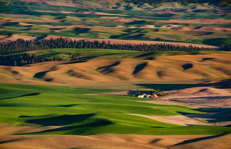 Scenics view of landscape