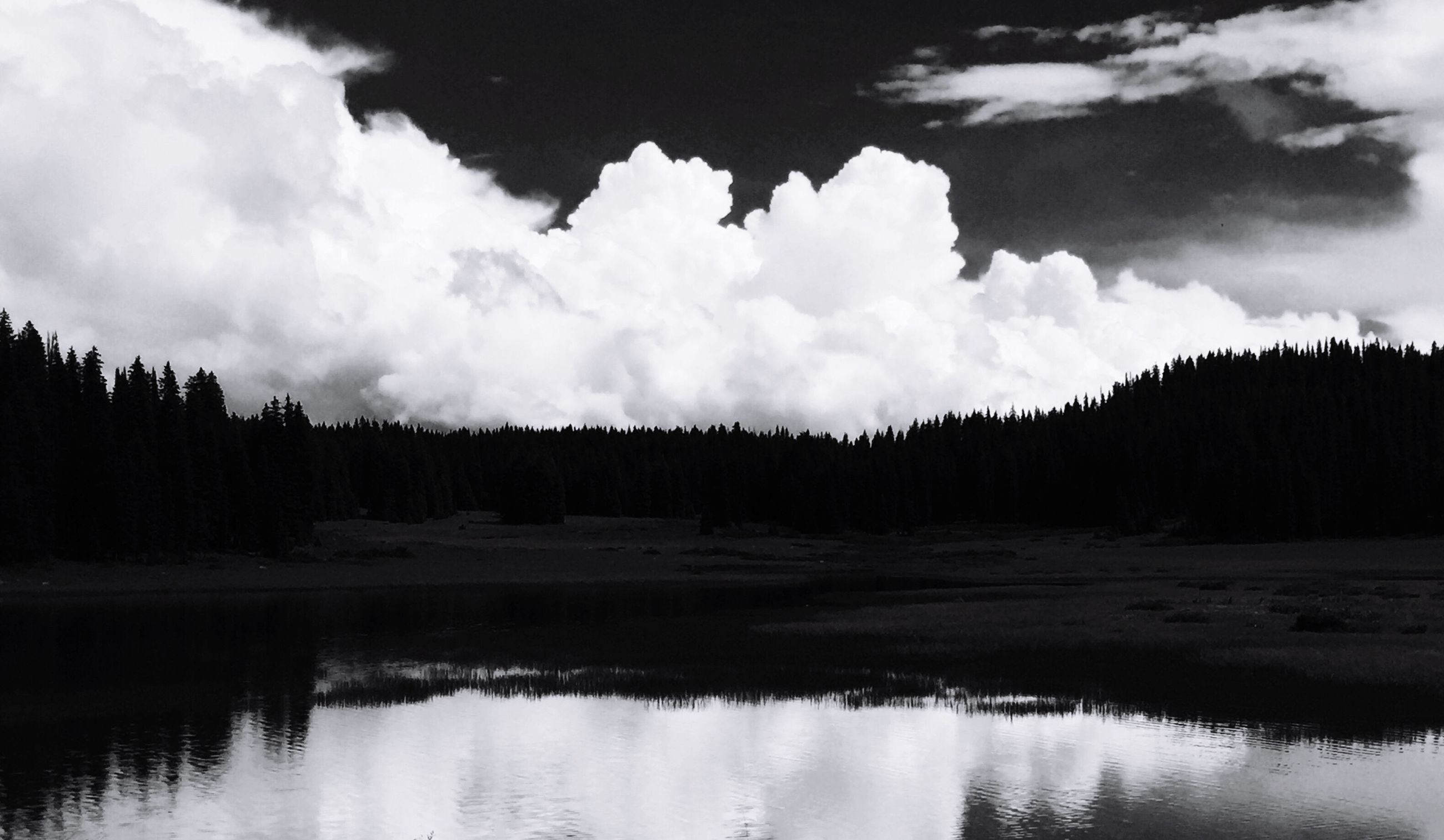 nature, water, tree, sky, cloud - sky, tranquility, scenics, tranquil scene, beauty in nature, reflection, outdoors, no people, day, growth