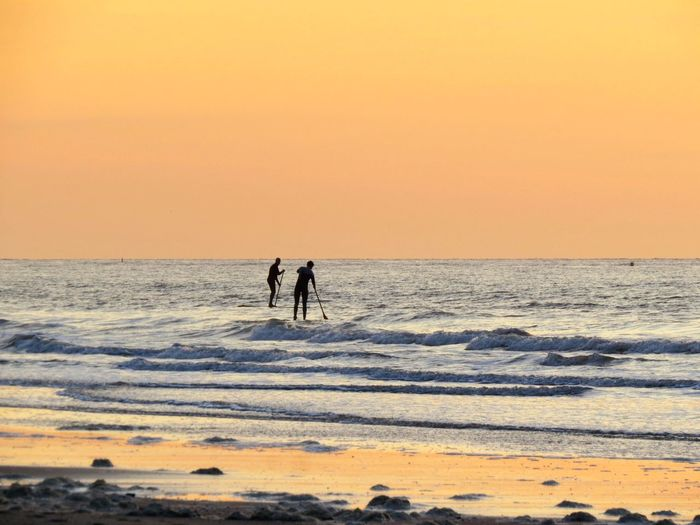 Silhouette of men paddleboarding in sea against sky during sunset